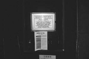 DSC 3856